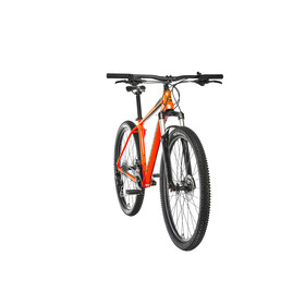 "Cannondale Trail 5 29"" ORG"